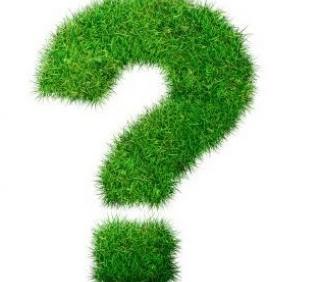 Генон - сервис по заработку на вопросах и ответах
